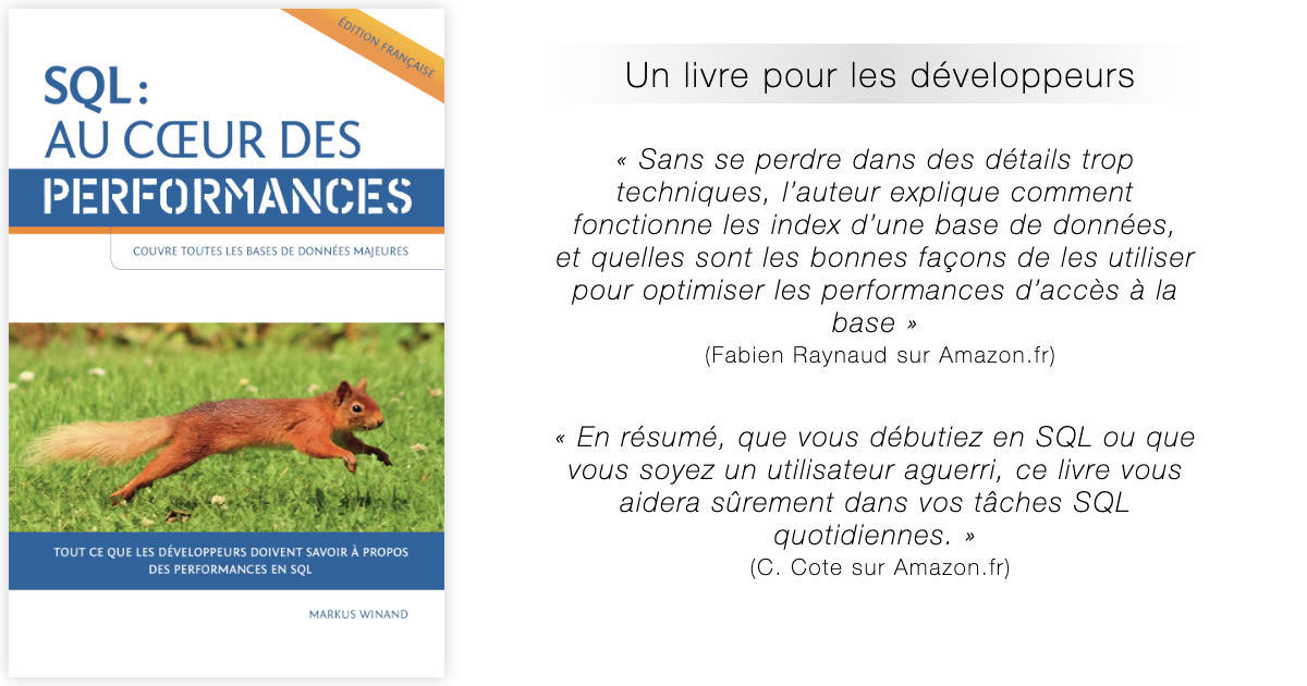 Sql Au Cœur Des Performances Le Livre D Optimisation Des